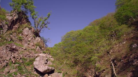 Spa nagano jigokudani V1-0081 Footage