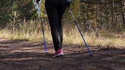 Legs of a woman practicing nordic walking in the autumn forest, she walks away Live Action
