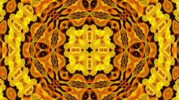 Dynamic Flowers Kaleidoscope Design Animation