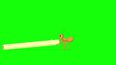 Ant pulls a stem of grass Animation