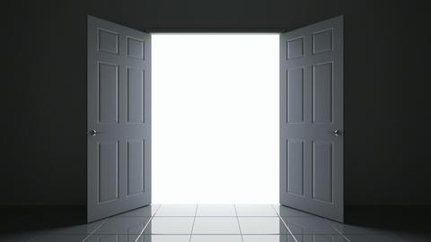Doors 3D animation Animation