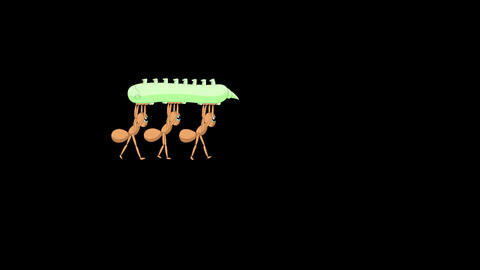 Three Ants carrying a caterpillar Animation