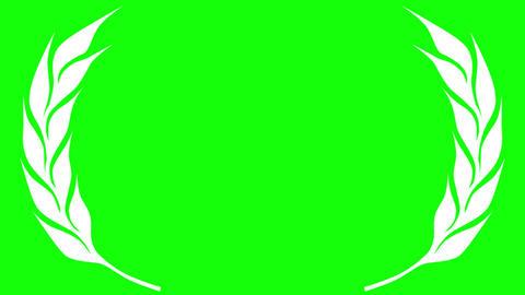 Award Laurel Leaves on Green Screen Animation