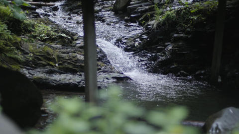 Mountain river in a wooded area. A small river flows along rocky shores Live Action