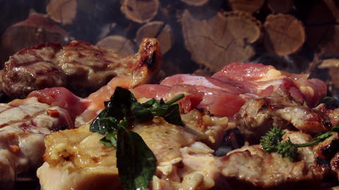 Barbecue with Pork and Chicken Meat Grilling Archivo