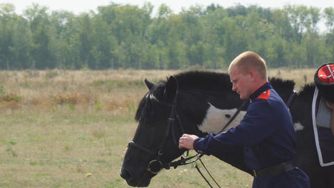 Cossack in military Cossack uniform is next to the horse Live Action
