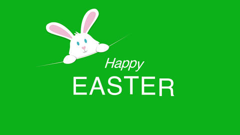 Animated closeup Happy Easter text and rabbit on green background Animation