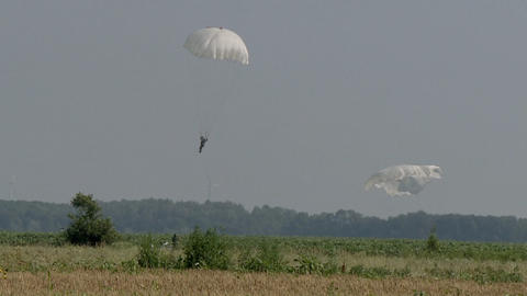 A detachment of paratroopers landed in a field, white round parachutes Live Action