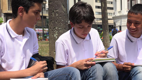 Teen Male Students Studying Live Action