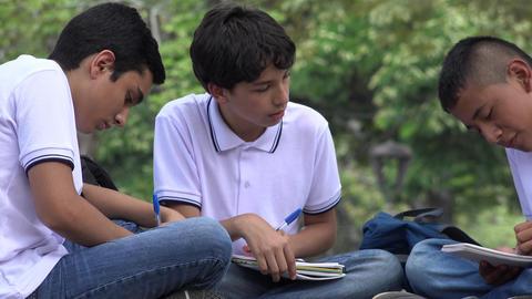 Teen Students Doing Homework Stock Video Footage