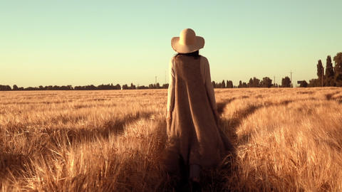 back view woman wearing hat going on the field with wheat... Stock Video Footage