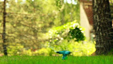 Spraying water on the lawn under pressure through the device HD Footage
