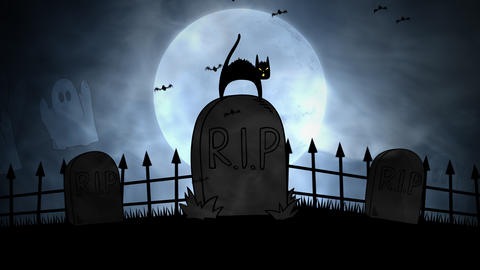Halloween background animation with the cat on grave Videos animados