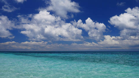 Tropical seascape Live Action