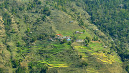 Mountain farming Himalayas 4k video. Valley hills rice terraces village Footage