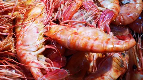 Boiled shrimp close-up, gourmet food Live Action