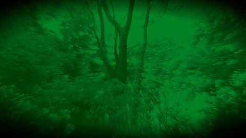 숲을 소재로한 시각예술입니다- 003 Footage