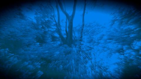 숲을 소재로한 시각예술입니다- 006 Footage