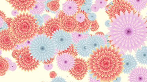 seamless loop of abstract flowers falling down Animation