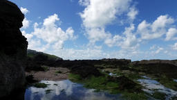 A gentle upward motion pan over rockpool with seaweed, to reveal lapping waves a Footage