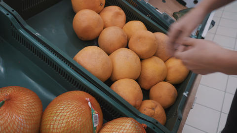 A girl chooses a grapefruit on the market Live Action