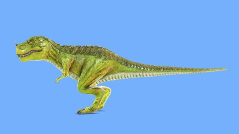 Tyrannosaurus GIF