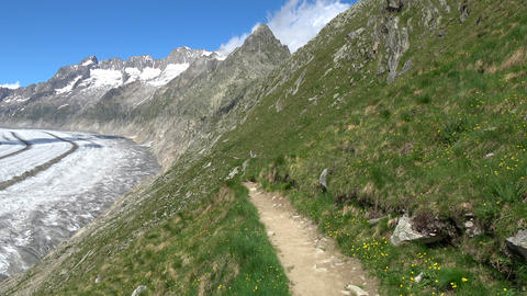 Walk through the great Aletsch Glacier, route Aletsch Panoramaweg in park Live Action