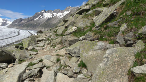 Walk through the great Aletsch Glacier in national park Switzerland Live Action