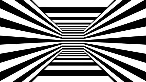 white box stripes Animation