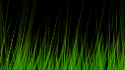 BG GRASS 004 30fps Stock Video Footage