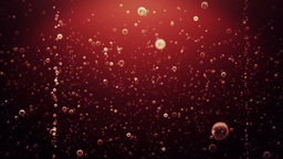 Bubbles Coke Animation