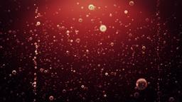 Bubbles Coke Animation