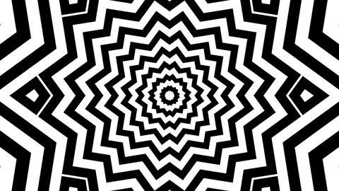 black white starlish Animation
