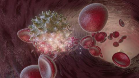 Virus Attacks Cells Stock Video Footage