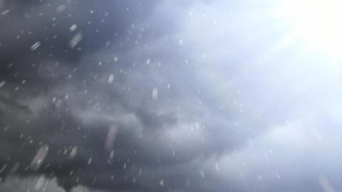 Sunny Rain Drops stock footage