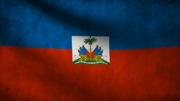 Haiti Flag stock footage