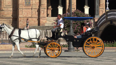 Horse Drawn Carriage With Tourists Footage