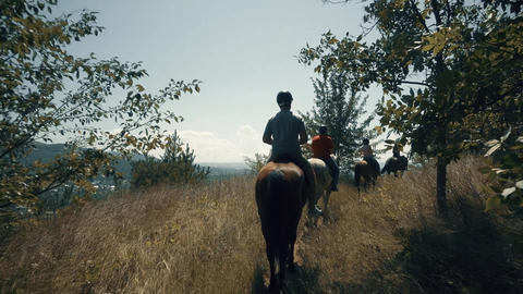 horse-riden tours in the forest Live Action
