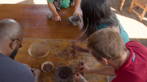 Tourists Peeling Roasted Cocoa Beans In Ecuador Live Action
