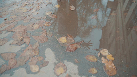 In the puddle on the street is reflected the girl in the coat. The girl looks in Live Action