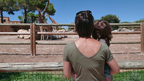 Mother And Child Looking At Giraffe In Zoo Zoological Gardens Footage