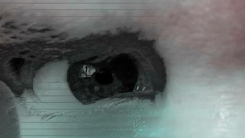 Crazy Acid Horror LooP Animation