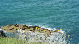 Waves gently breaking on rock on Irish coastline, Wexford, Ireland on a sunny su Footage