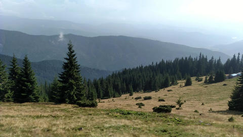 Spruce mountains and sky Environment in sunny day ature in the Carpathians Green color landscape Live Action