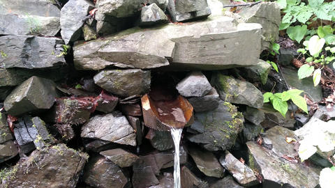 Spring water flowing from the mountain along a wooden gutter Fresh liquid source wooden channel Live Action