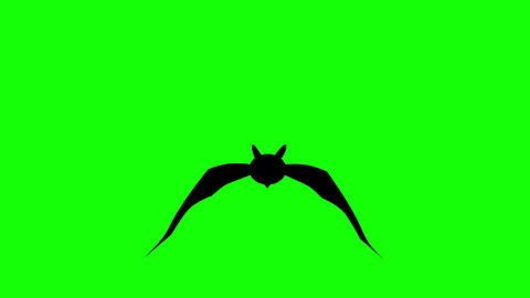 Flat style animation bat hovering against green background. Seamless loop background Animation