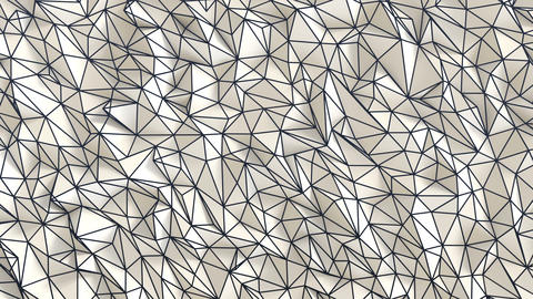 White low poly background wire frame GIF