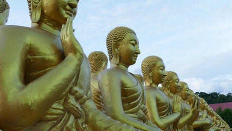 Bucha Buddhist memorial park Footage