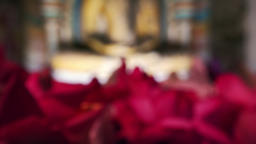 Pink lotus flowers offering to the statue of meditating Buddha. Sri Lanka Footage