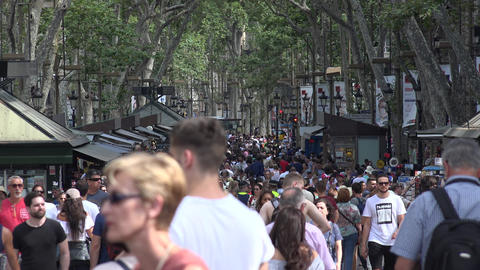 Crowded Street With Pedestrians Live Action